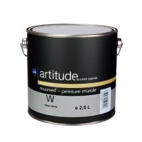 Artitude by Levis